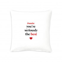"16"" Seriously the Best  Cushion"