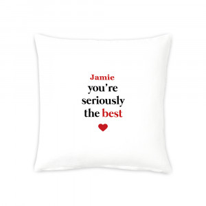 """16"""" Seriously the Best  Cushion"""